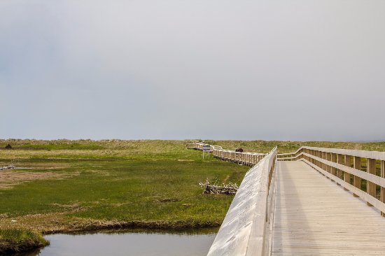 Lawrencetown, Kanada: Boardwalk