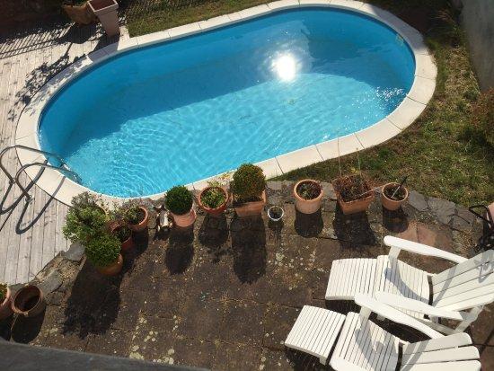 Springiersbacher hof weingut borchert bewertungen for Swimming pool preisvergleich
