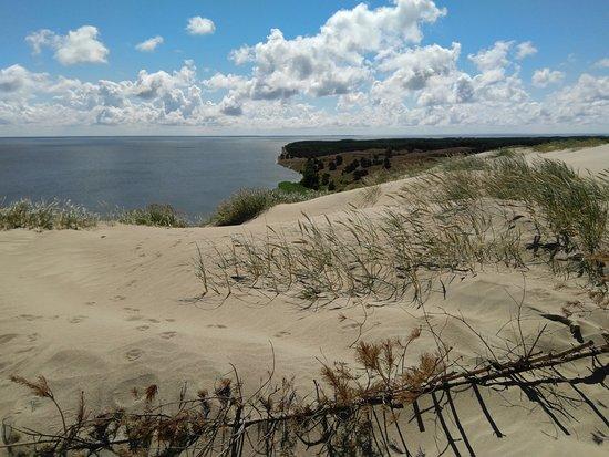 The Dead Dunes