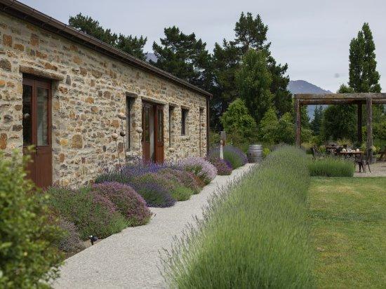 Wanaka, Nuova Zelanda: The tea garden in front of shop & tearoom