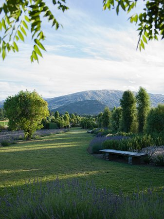 Wanaka, Nuova Zelanda: Some of the gardens
