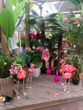 Tropical display at Stewarts Christchurch Garden Centre