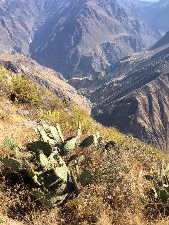 Cabanaconde, Perú: photo4.jpg