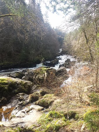 Dunkeld, UK: Hermitage Walk