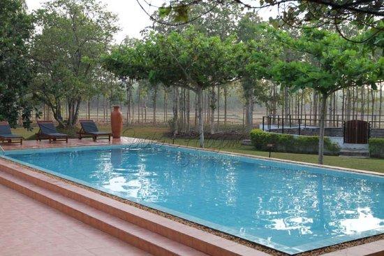 Villa wild ceylon bewertungen fotos preisvergleich for Swimming pool preisvergleich
