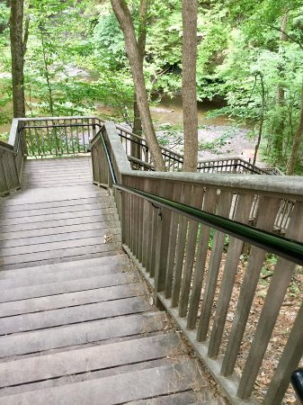 Saratoga Springs, NY: Stairs on the Geyser Creek Trail