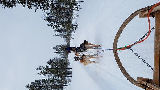 Saariselka, Finlandia: 20170305_135347_large.jpg