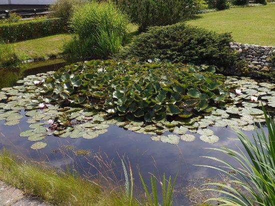 Hehlen, Γερμανία: Kleiner Teich nahe des Hotel- Eingangs