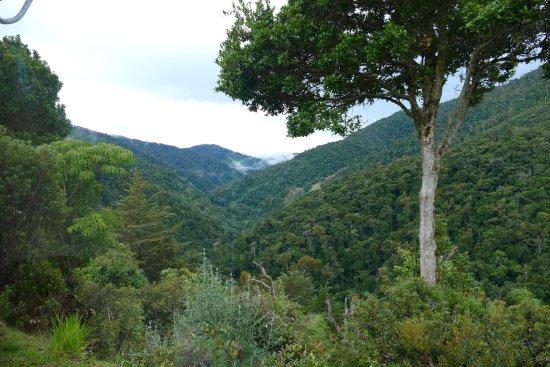San Gerardo de Dota valley