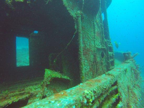 Dive Exuma Foto