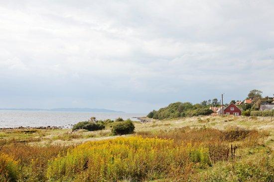 Magnarps Strandmark Naturreservat