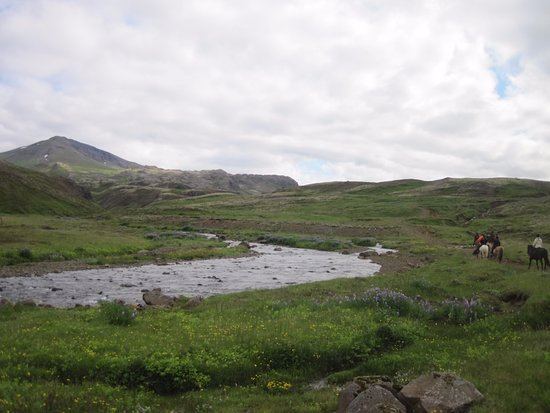 Mosfellsbaer, IJsland: Scenery