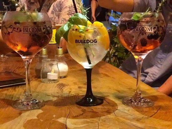 Mandragora gin wine tapas bar sitio de calahonda restaurantbeoordelingen tripadvisor - Mandragora malaga ...