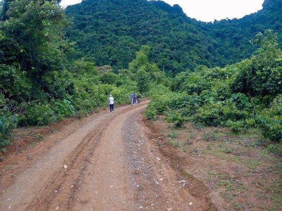 VLT Natural Tours: photo6.jpg