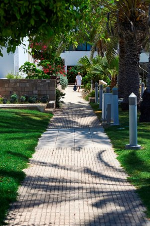 Louis Ledra Beach - Garden View