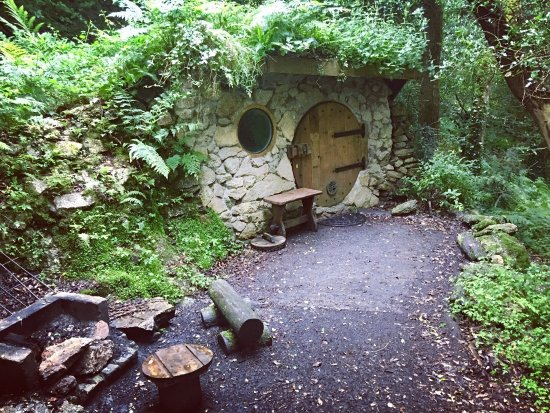 St Blazey, UK: We camped in our own tent but the hobbit Homes look incredible!