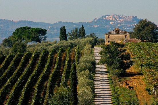 Montepulciano, Italien: Valdichiana Senese's Landscape
