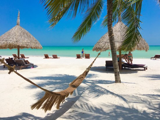 Holbox Hotel Casa las Tortugas - Petit Beach Hotel & Spa 이미지