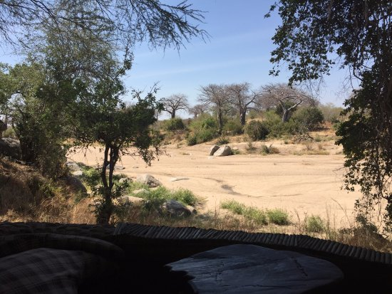 Ruaha National Park, Tanzânia: Overlooking the river bed