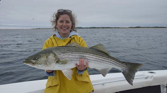 Truro, MA: Biggest fish of the day! 41 inch striper