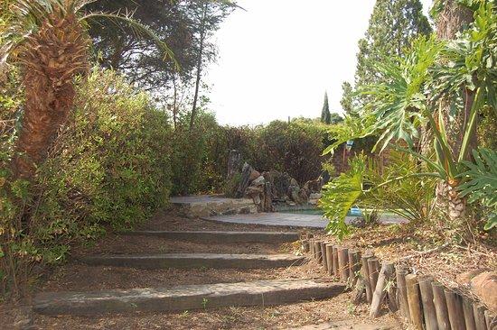 Fourways, Güney Afrika: Footpath through the garden