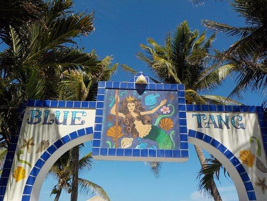 Blue Tang Inn: Entrance sign