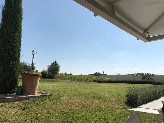 Foiano Della Chiana, Italia: photo1.jpg