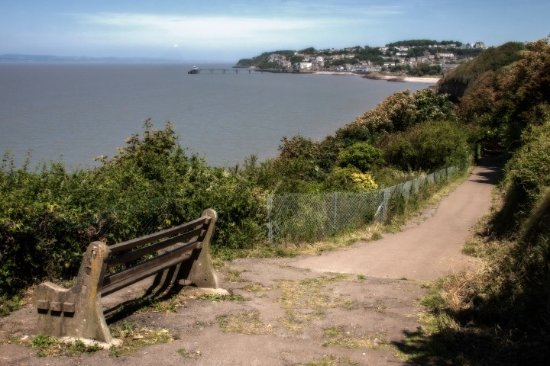 Clevedon Picture