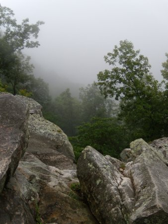 Lookout Mountain, TN: Eastern view from Point Park