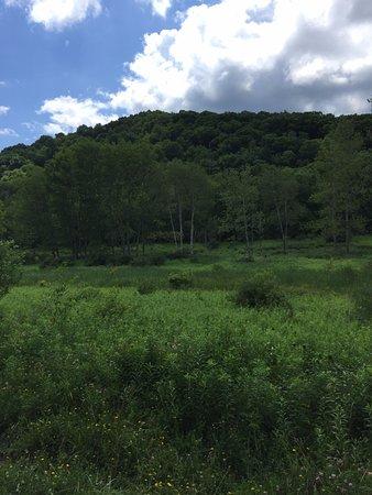 Punxsutawney, PA: Senic view