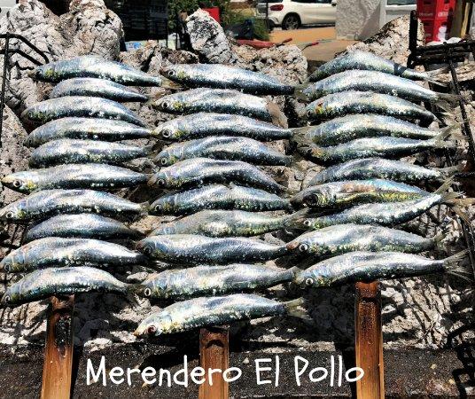 Benajarafe, Espanha: Espetos
