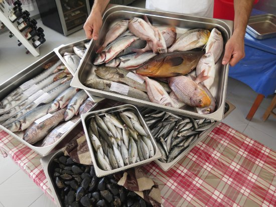 Elafonisi Resort by Kalomirakis Family: Grouper, red snapper, sea bass, milano-i, sardines, scorpion ...