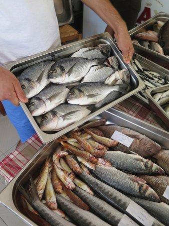 Elafonisi Resort by Kalomirakis Family: fresh fish very day!!! delicious!!!