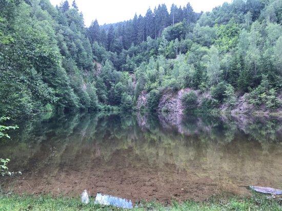 Schenkenzell, ألمانيا: Silbersee wie im Bilderbuch ! In Reinerzau auf der Reinerzauer Talstrasse.