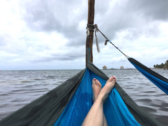Las Terrazas Resort: So relaxing in the water hammock