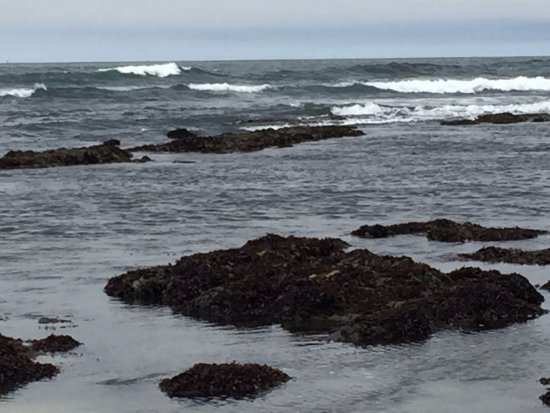 Moss Beach, CA: Tidal pools emerging as the tide goes out