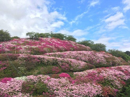 Tomisuyama Park