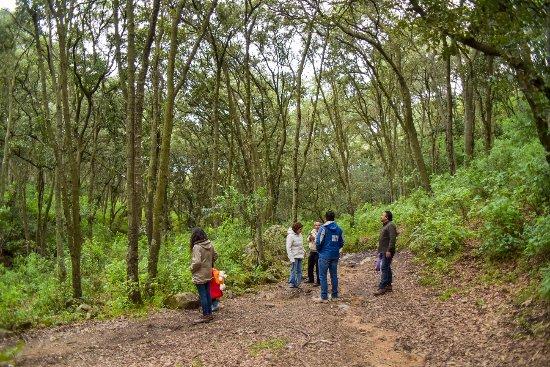 Tepotzotlan, Mexiko: Descubre los rincones de Tepotzotlán