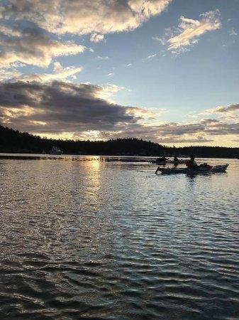 Friday Harbor, WA: Kayaking