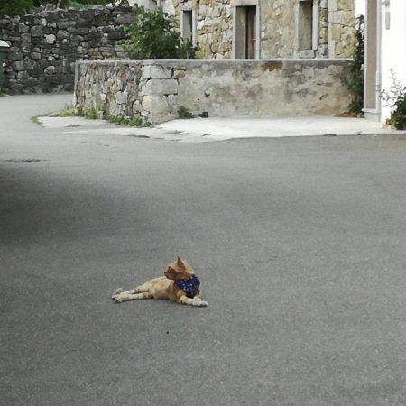 Roc, Kroatien: photo1.jpg