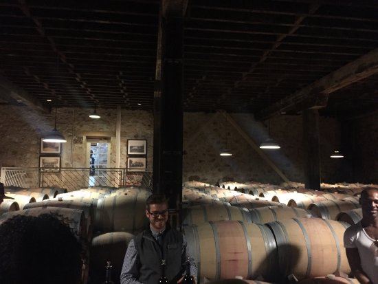The Hess Collection Winery & Art Museum: photo2.jpg