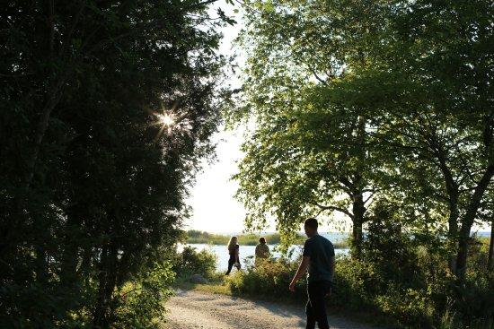Northport, ميتشجان: Leelanau State Park