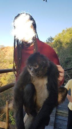 Hartbeespoort, Südafrika: goMeihuaTemp_mh1500572193044_large.jpg