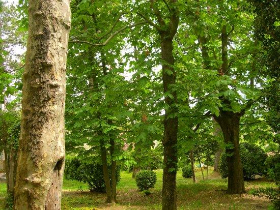 Sospel, France: Le parc