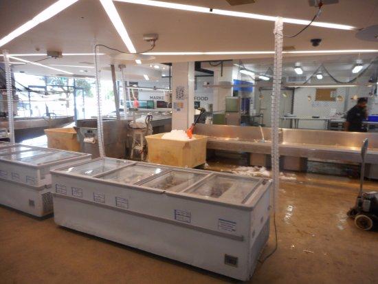 Auckland Region, New Zealand: ArghyaKolkata Auckland Fish Market-5