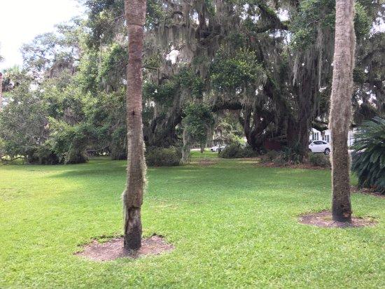Jekyll Island Historic District: photo4.jpg