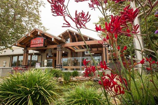 Salt Creek Grille El Segundo Menu Prices Restaurant