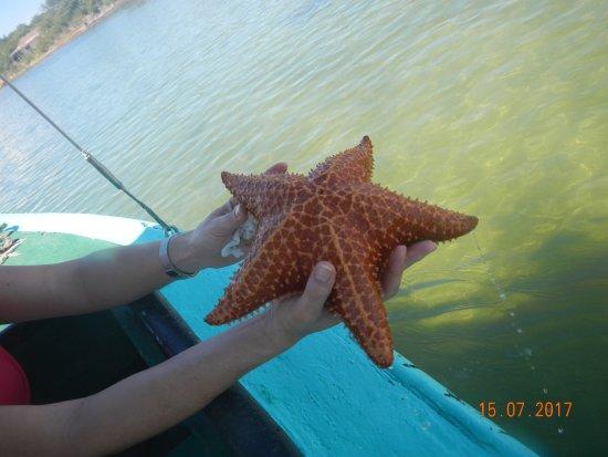Islazul Pasacaballo Hotel: Fue devuelta al mar claro!!!