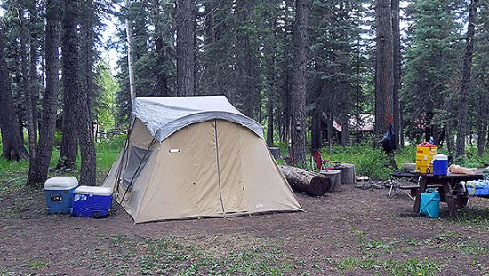 Tent Camping Sites - Picture of Bruce Spruce Ranch, Pagosa