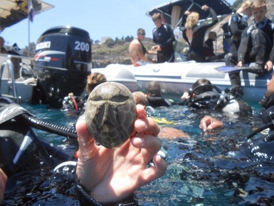 Giardini-Naxos, Włochy: tutti insieme in allegria e sicurezza